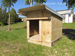 Custom Dog Kennels, Auckland New Zealand